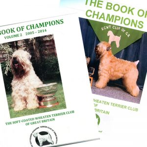 Book of Champions volumes 1 & 2