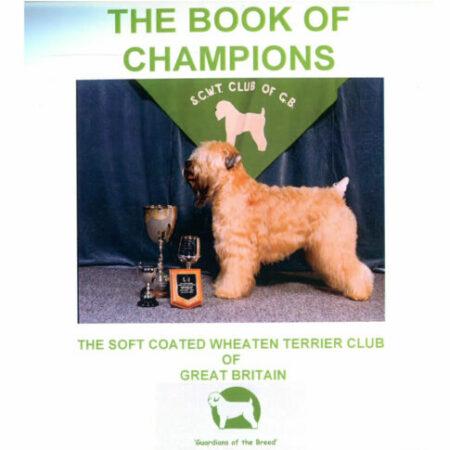 Book of Champions volume 1