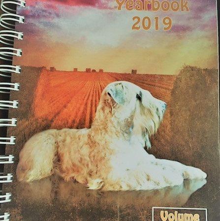 year book 2019