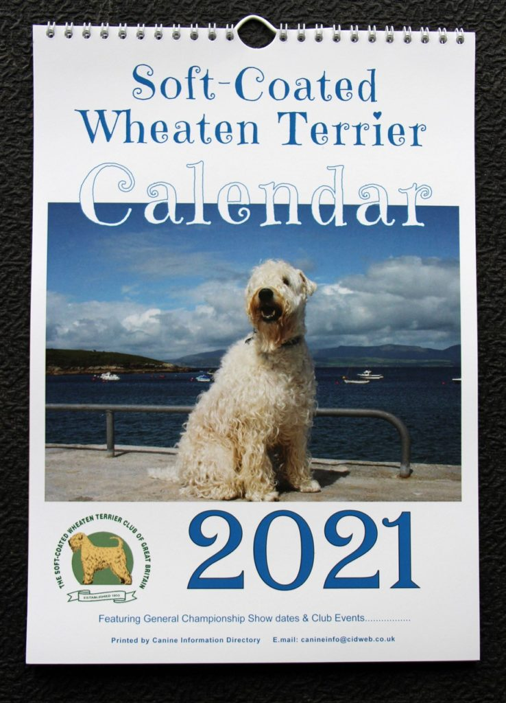 A4 2021 Calendar