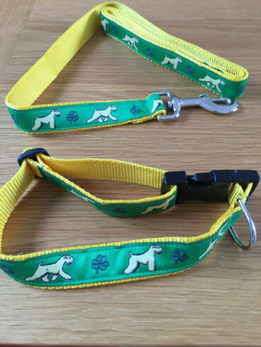 Collar and Lead Green with yellow inner